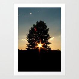 Starlight by Matthew Scrivner Art Print