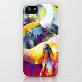 Elephant 4 iPhone Case