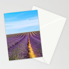 Lavender of Provence Stationery Cards