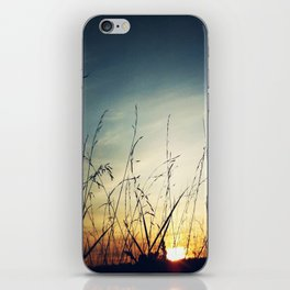 Dawn iPhone Skin