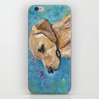 lab iPhone & iPod Skins featuring Yellow Lab by gretzky