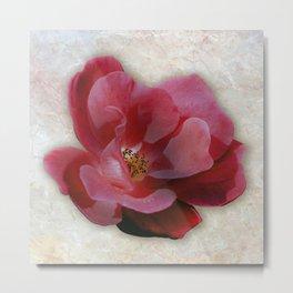 Sangria Rose on Marble Metal Print