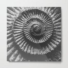 Grey scale ammonite Metal Print