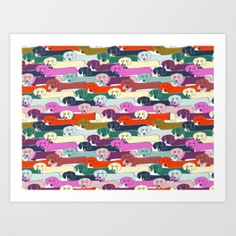 colored doggie pattern Art Print