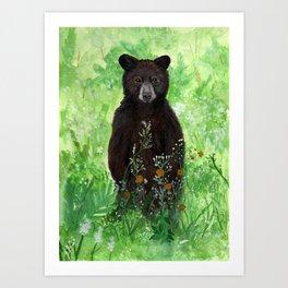 Cinnamon Black Bear Cub Art Print