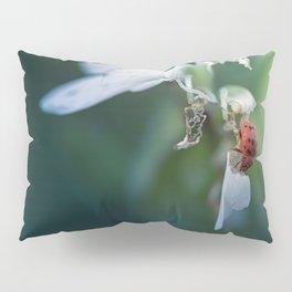 Equilibrium Pillow Sham