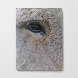 Donk-eye (I am so sorry for that) Metal Print