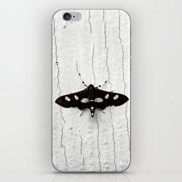 Grape Leaffolder Moth iPhone Skin