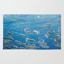 Fish School Underwater. Fishes underwater Rug