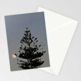 Araucaria tree, full moon, flight of birds Stationery Cards