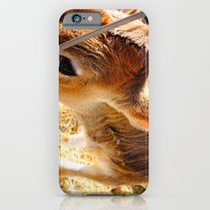 HoliCow Slim Case iPhone 6s