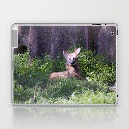 Philadelphia Zoo Series 15 Laptop & iPad Skin