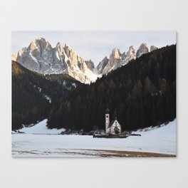 isolated. Canvas Print