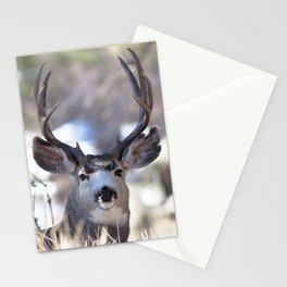 Watercolor Deer, Mule 02, RMNP, On Guard Stationery Cards
