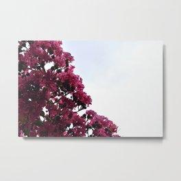 Pink Flowers and Sky Metal Print
