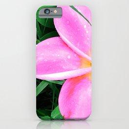 Pink Plumeria Hawaiian Flower With Tropical Rain Drops iPhone Case