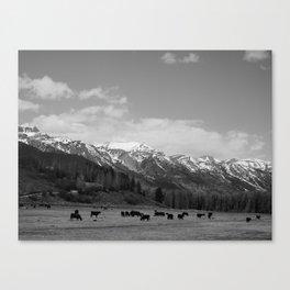 The Grand Tetons: Grazing Canvas Print