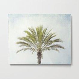 Palm Tree Photography, California Beach Coastal Art, Palm Trees Sky Metal Print