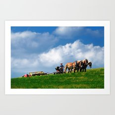 Amish farmer plowing Art Print