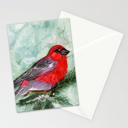 Pine grosbeak Stationery Cards