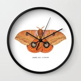 Randa's Eyed Silkmoth (Automeris randa) Wall Clock