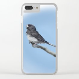 Junco Clear iPhone Case