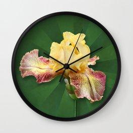 Yellow Iris Flowers on Radial Green Stripes Wall Clock