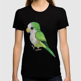 Very cute parrot T-shirt