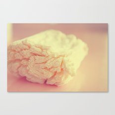 old soap Canvas Print