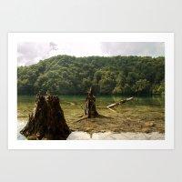 Lake in Croatia Art Print