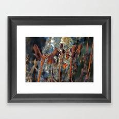 Flowers for algernon Framed Art Print