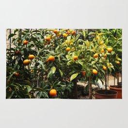Italian Oranges Rug
