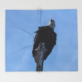 Bald Eagle Photography Print Throw Blanket