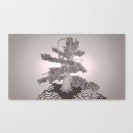 Japanese Pine /ˈvɒksɛl/ Canvas Print