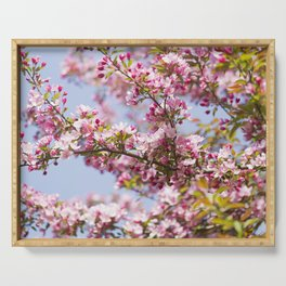 Crabapple Blossoms 16 Serving Tray