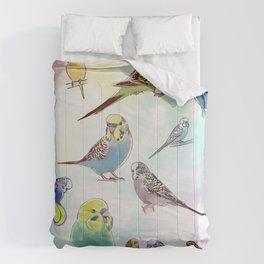 Budgies Comforters
