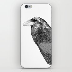 Corvus Corax iPhone & iPod Skin