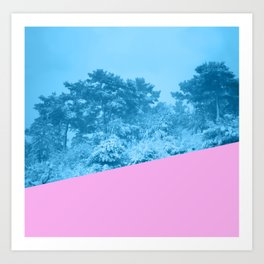 silence in winter Art Print