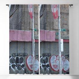 Coney Island summer 2020 Blackout Curtain