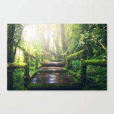 Green Jungle Forest Path Canvas Print