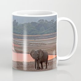 Walk in the evening light, Africa wildlife Coffee Mug