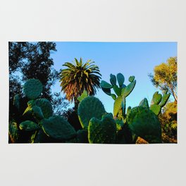 California Spikey Cactus Rug