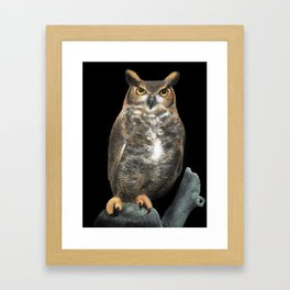 Superb Owl Sunday Framed Art Print
