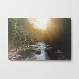 A Pacific Northwest River Adventure - 64/365 Nature Photography Metal Print