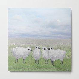 sheep in a field Metal Print