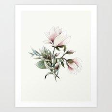 Magnolia and Olives Art Print