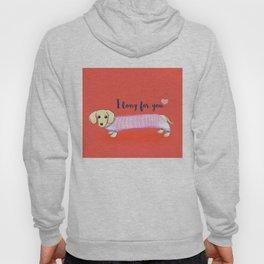 Valentine's Day dachshund dog Hoody