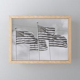 American flags Framed Mini Art Print