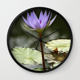 Beauty At The Pond Wall Clock