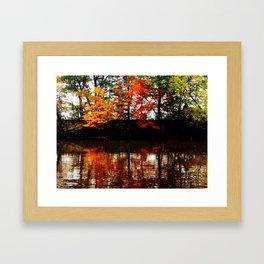 All Four Seasons Framed Art Print